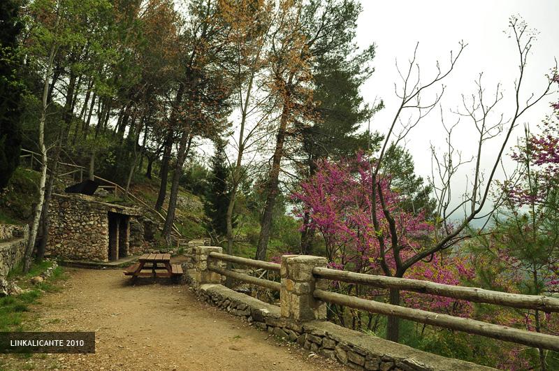 Área Recreativa Font dels Olbits, la Safor