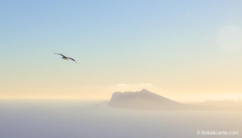 La Serra Gelada desde Ifac