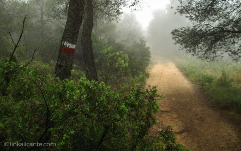 Rutas de senderismo con lluvia en Alicante