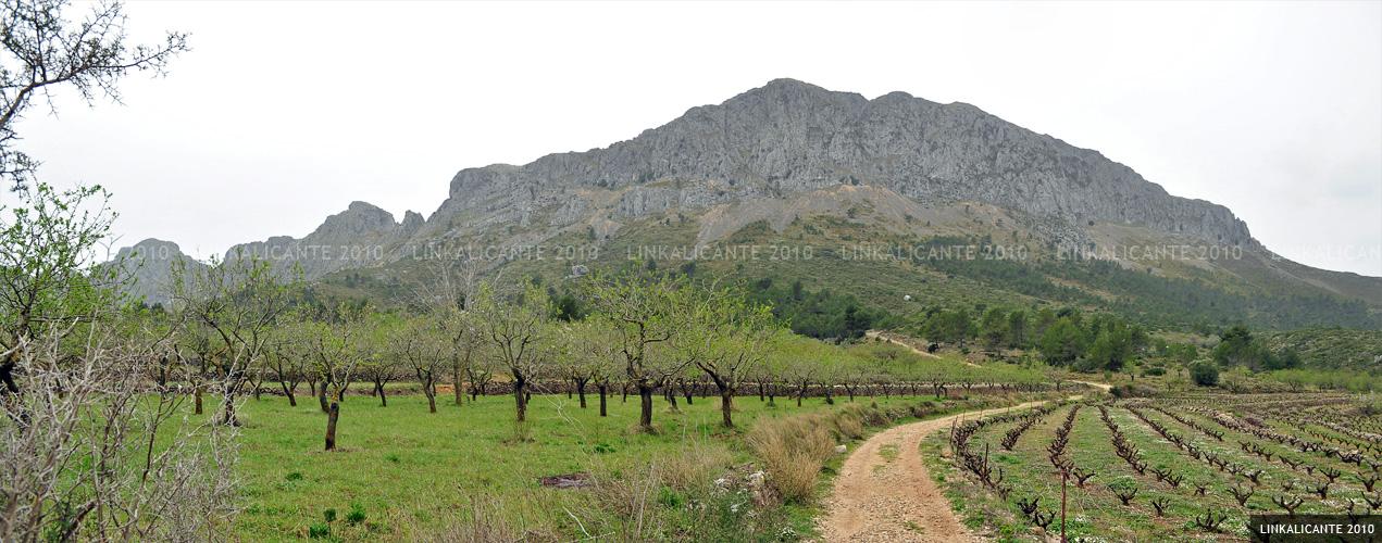 Cara norte de la Serra de Bèrnia
