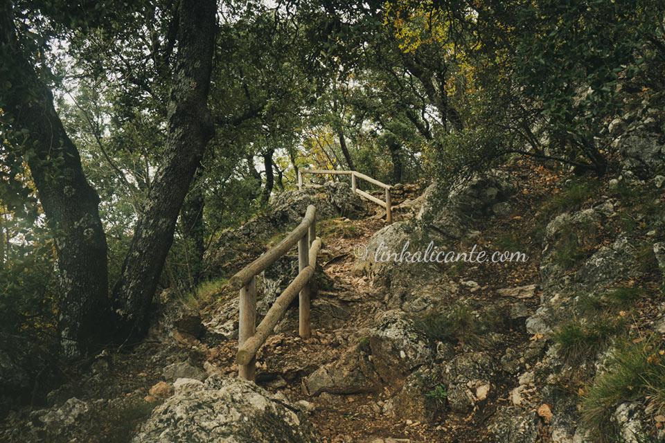 Parc Natural de la Font Roja, Alcoi