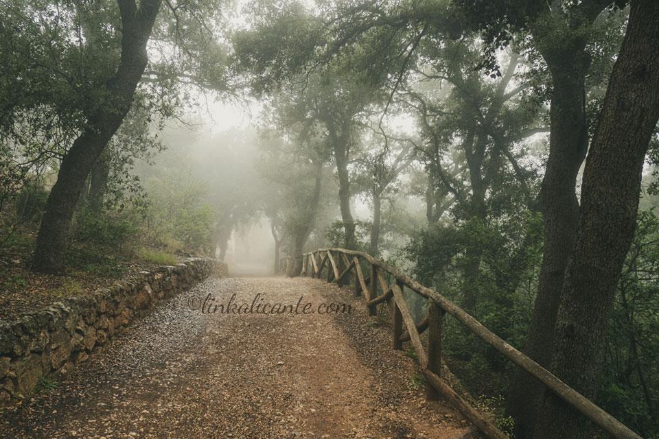 Parc Natural de la Font Roja
