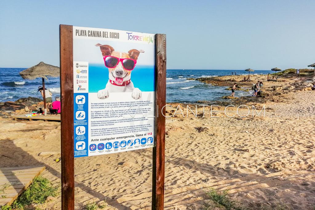 playa-canina-rocio-del-mar-torrevieja-alicante
