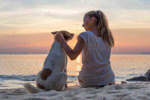 playas-perros-playas-caninas-alicante-doggy-beach-costa-blanca
