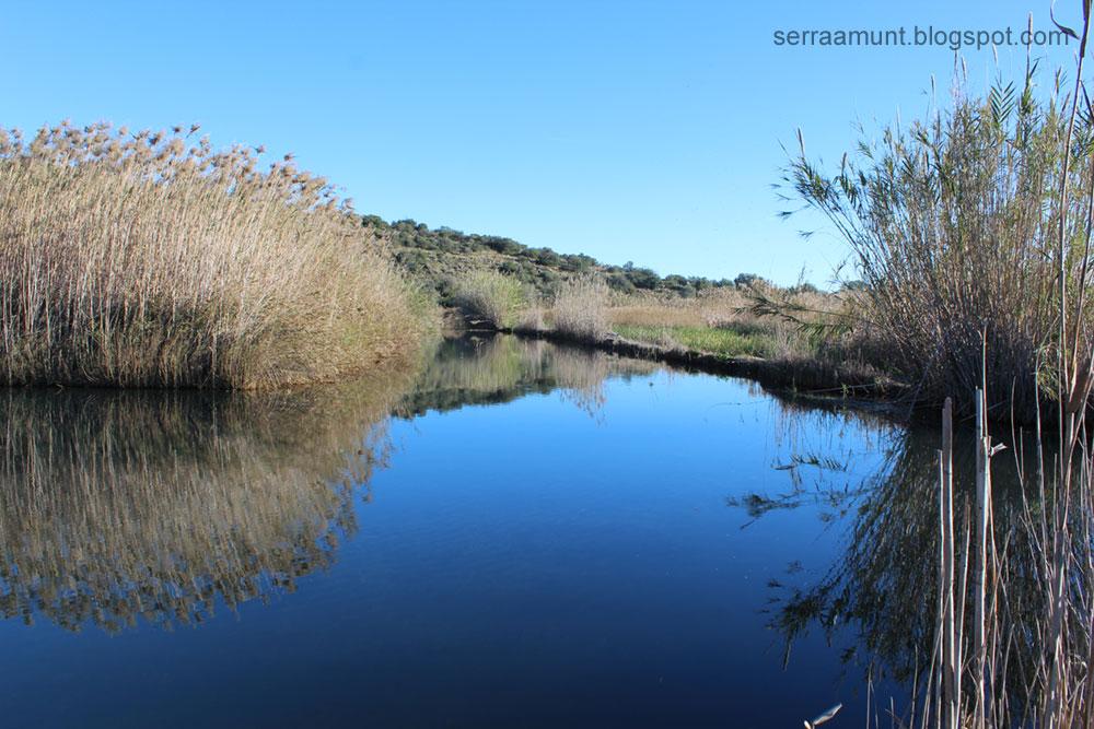 Riu Bullent, Marjal de Pego-Oliva