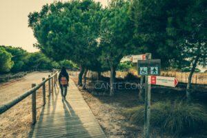 Ruta accesible Laguna de la Mata (Torrevieja)