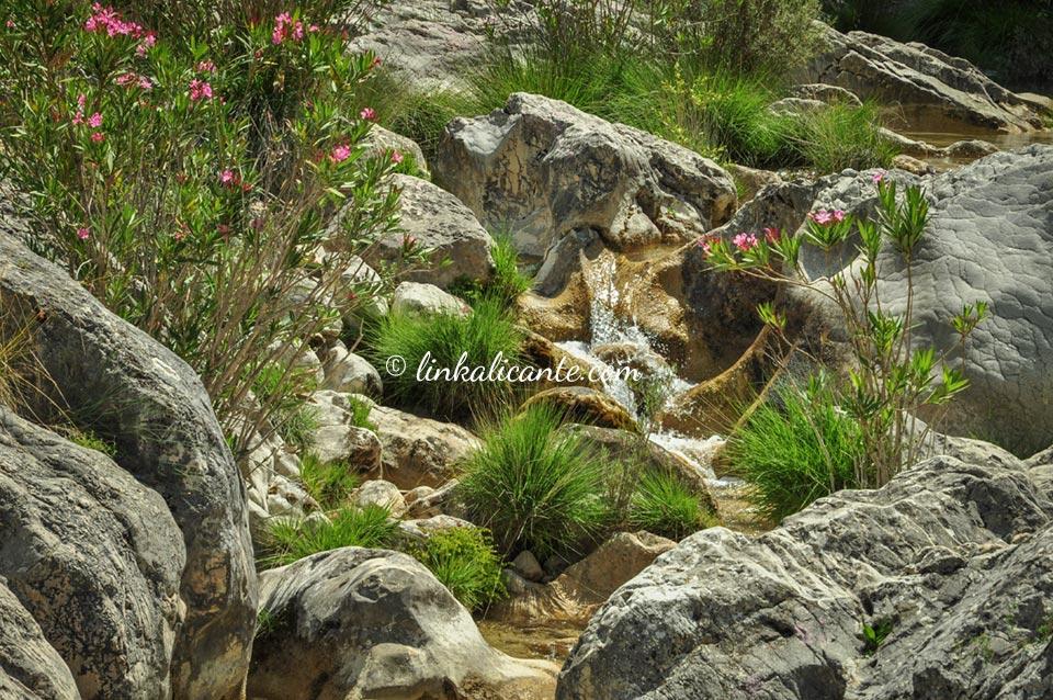 Ruta Barranc de l'Encantada