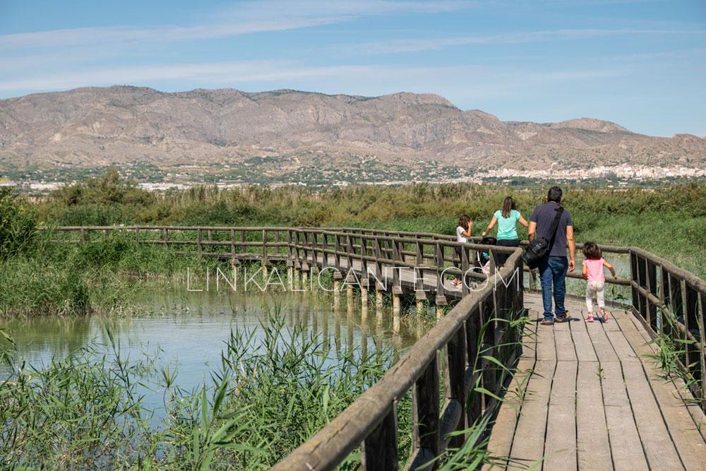 Ruta inclusiva en El Hondo