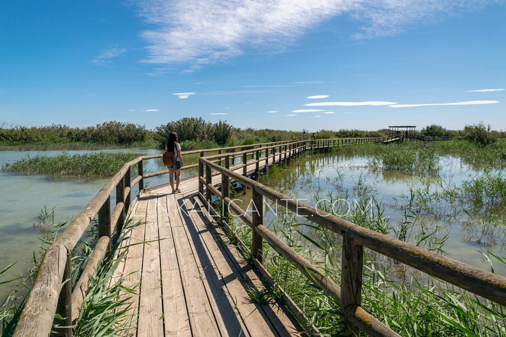 Ruta inclusiva en e Parque Natural de El Hondo