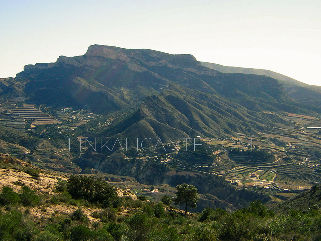ruta-sierra-caballo-petrer-03