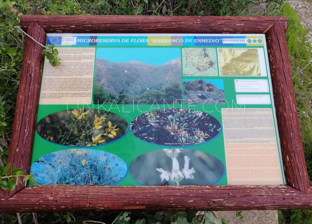 Microrreserva de Flora Barranco de Enmedio - Sierra de Callosa