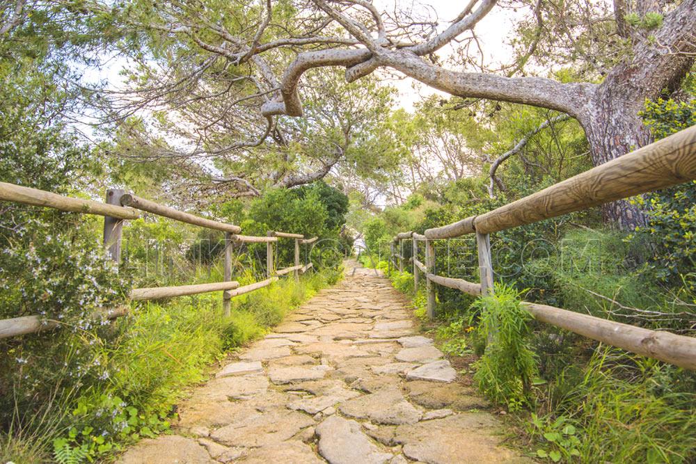 Ruta de subida al Peñón de Ifach