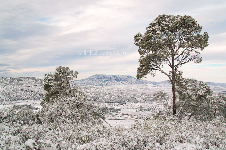 rutas-nieve-alicante-encebres-pinoso