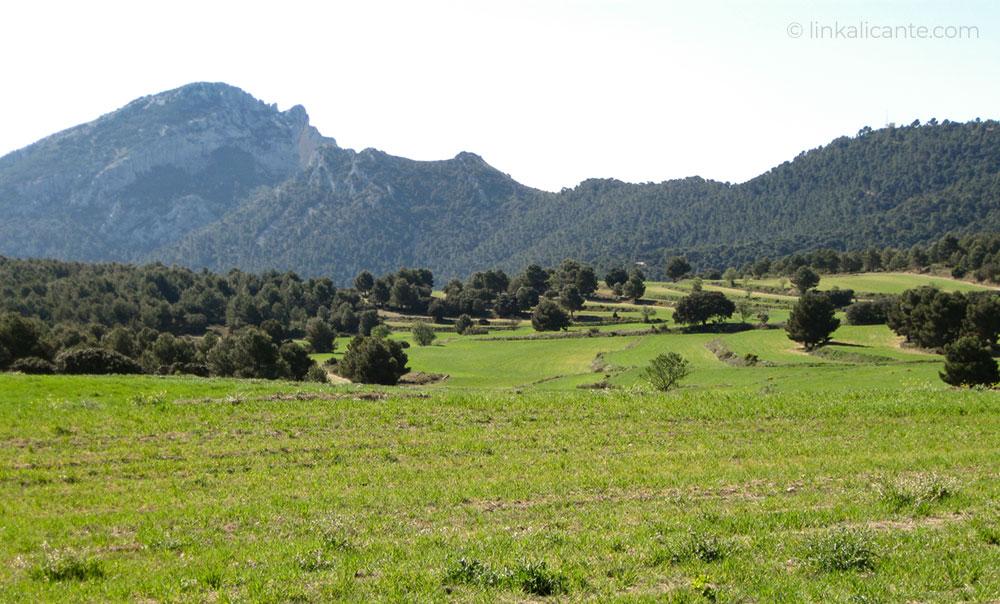 senderismo-sierra-maigmo-alicante-IMG_0574