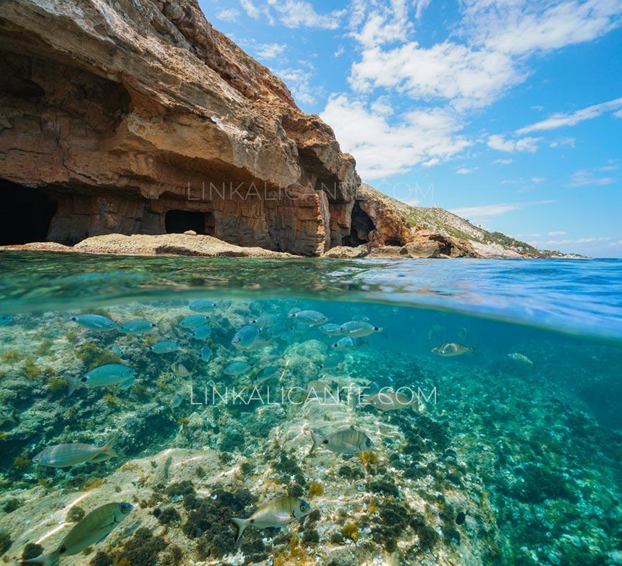 Snorkel en la Cova Tallada, Jávea, Alicante